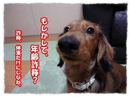 2012_1_18_1_convert_20120118224759.jpg