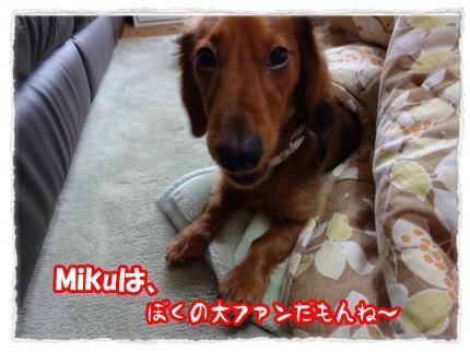 2012_1_18_2_convert_20120118224824.jpg