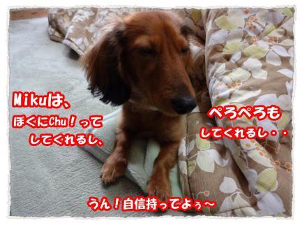 2012_1_18_5_convert_20120118224924.jpg