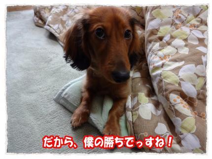 2012_1_18_6_convert_20120118224946.jpg