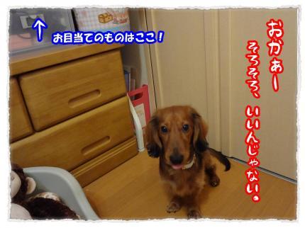 2012_1_19_4_convert_20120119232655.jpg