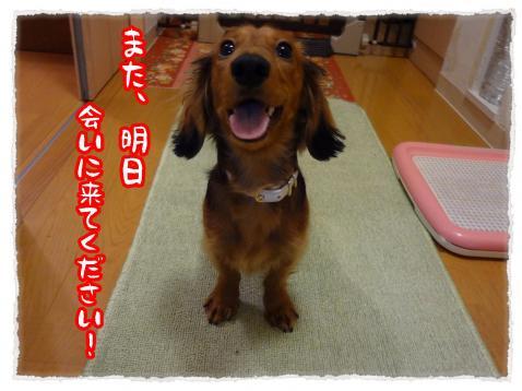 2012_1_20_3_convert_20120119235541.jpg