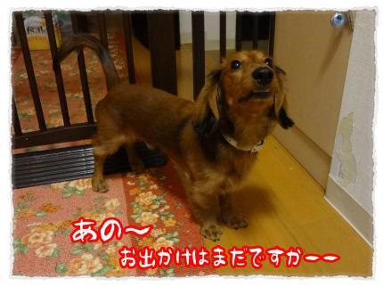 2012_1_21_1_convert_20120121232857.jpg