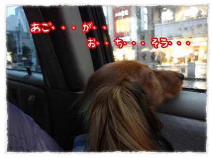 2012_1_21_5_convert_20120121233011.jpg