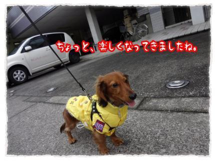 2012_1_22_4_convert_20120122222245.jpg