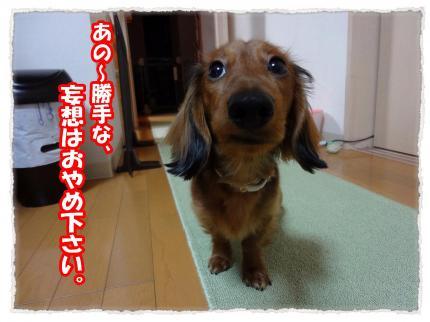 2012_1_27_2_convert_20120127222920.jpg