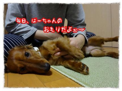 2012_1_27_5_convert_20120127223012.jpg
