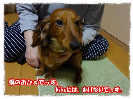 2012_1_27_7_convert_20120127223101.jpg