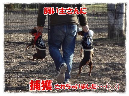 2012_1_7_8_convert_20120107223939.jpg