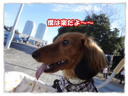 2012_1_8_3_convert_20120108225102.jpg