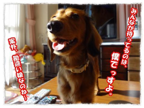 2012_1_9_2_convert_20120109232311.jpg