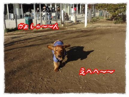 2012_2_13_1_convert_20120213232208.jpg