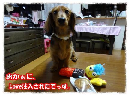 2012_2_14_1_convert_20120214232732.jpg