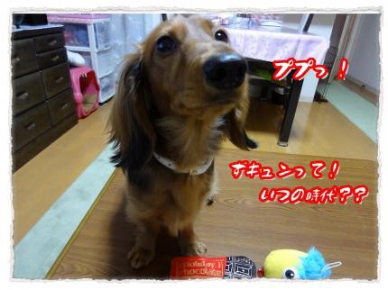 2012_2_14_2_convert_20120214232800.jpg