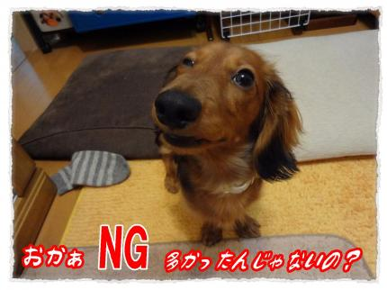 2012_2_18_2_convert_20120218232332.jpg
