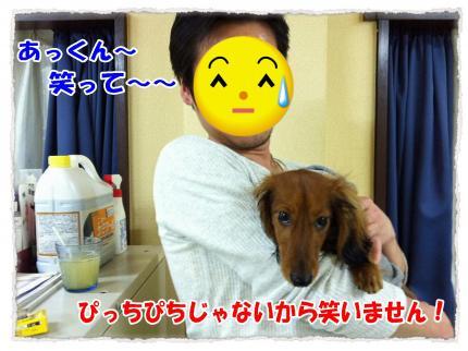 2012_2_19_6_convert_20120219232751.jpg