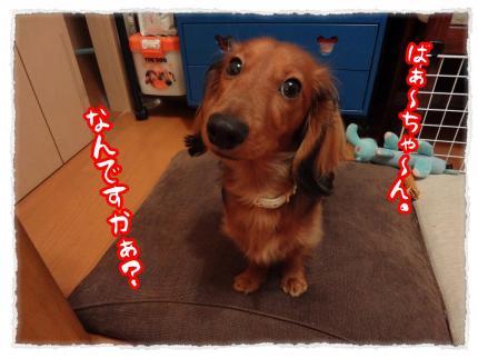2012_2_20_1_convert_20120220233739.jpg