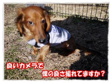 2012_2_21_1_convert_20120221225630.jpg