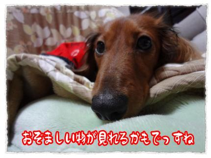2012_2_22_7_convert_20120222222708.jpg