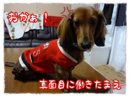 2012_2_22_8_convert_20120222224023.jpg