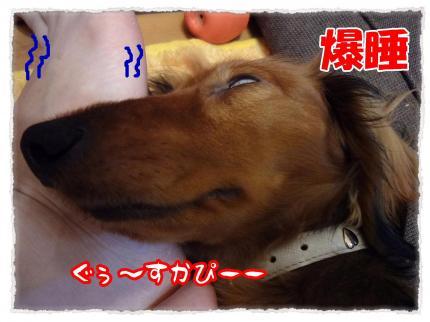 2012_2_23_5_convert_20120223220643.jpg