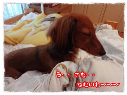 2012_2_28_3_convert_20120229234217.jpg