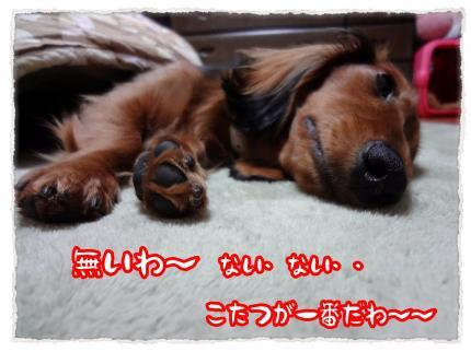 2012_2_29_1_convert_20120229234247.jpg