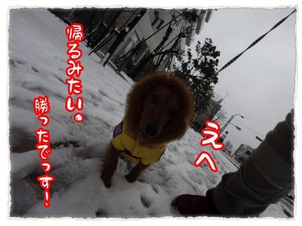 2012_2_29_8_convert_20120229234433.jpg