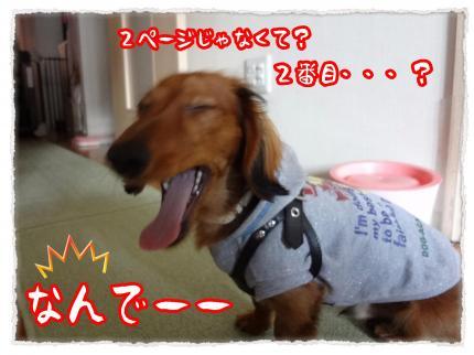 2012_2_2_3_convert_20120202233119.jpg