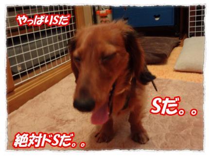 2012_2_3_4_convert_20120203225320.jpg