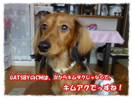2012_2_5_7_convert_20120205232553.jpg