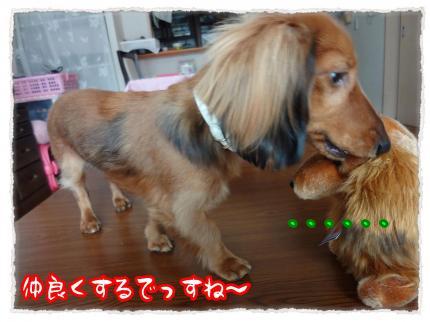2012_2_8_3_convert_20120208220932.jpg