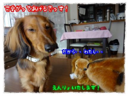 2012_2_8_5_convert_20120208221013.jpg