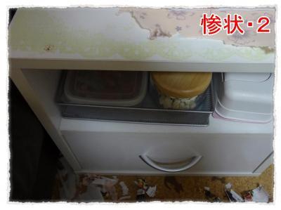 2012_3_10_1_convert_20120310232221.jpg