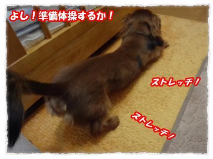 2012_3_10_3_convert_20120310232316.jpg