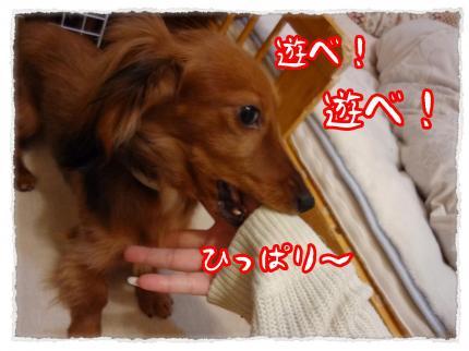 2012_3_10_8_convert_20120310232457.jpg