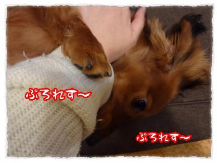 2012_3_10_9_convert_20120310232515.jpg