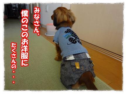 2012_3_19_1_convert_20120319233713.jpg