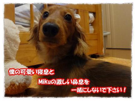 2012_3_19_5_convert_20120319233841.jpg