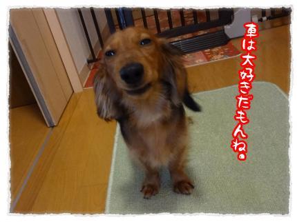 2012_3_22_1_convert_20120322221613.jpg