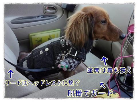 2012_3_22_2_convert_20120322221649.jpg