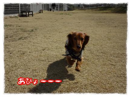 2012_3_23_2_convert_20120323231913.jpg