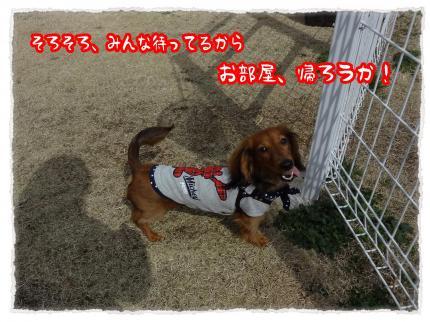 2012_3_23_3_convert_20120323231933.jpg