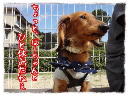 2012_3_23_4_convert_20120323231951.jpg
