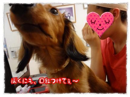 2012_3_24_1_convert_20120324233404.jpg