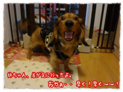 2012_3_24_61_convert_20120324233655.jpg