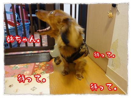 2012_3_24_6_convert_20120324233551.jpg