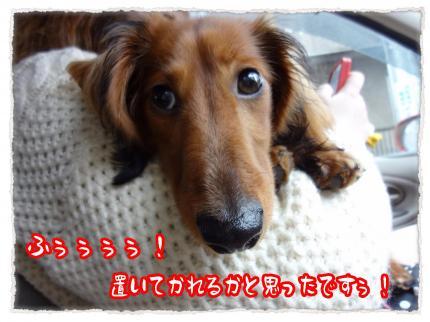 2012_3_24_8_convert_20120324233622.jpg