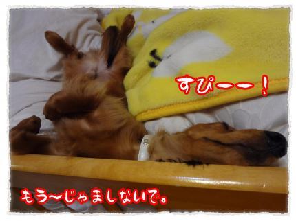 2012_3_28_8_convert_20120328225543.jpg