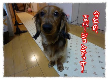 2012_3_30_1_convert_20120330231117.jpg